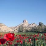کوه قلاقیران – ایلام