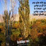 گردشگری خانه های دوم و اثرات آن بر نواحی روستایی : فرصت یا تهدید ( مورد: نواحی روستایی شمال تهران)