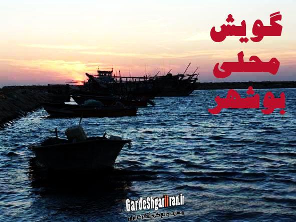 گویش محلی بوشهر
