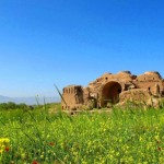 کاخ اردشیر بابکان – فیروز اباد