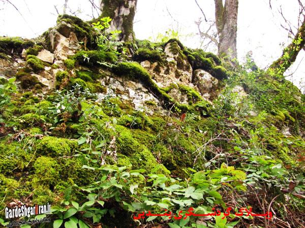 خرابه های قلعه فریدون11