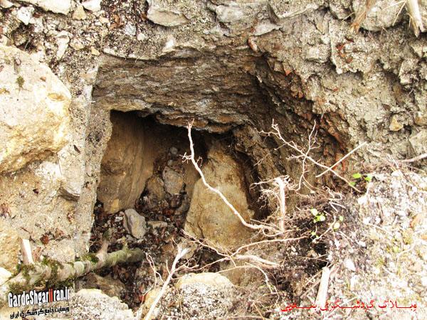 خرابه های قلعه فریدون14