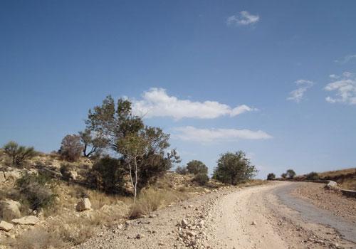 منطقه حفاظت شده هُرمود (هرمد)1