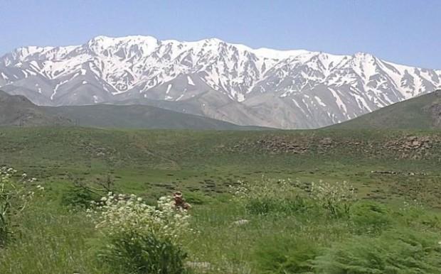 قالی کوه 2
