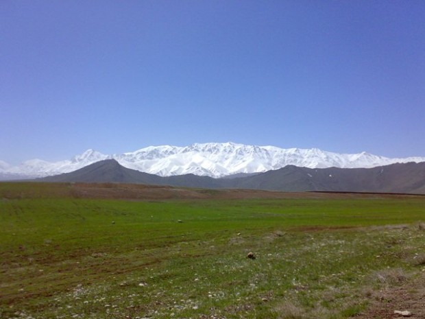 قالی کوه 3