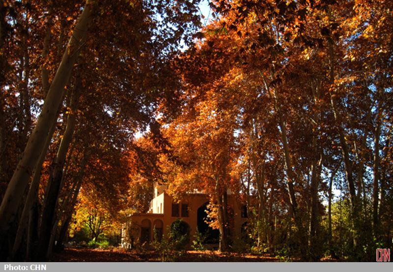 پاییز مهریز یزد7