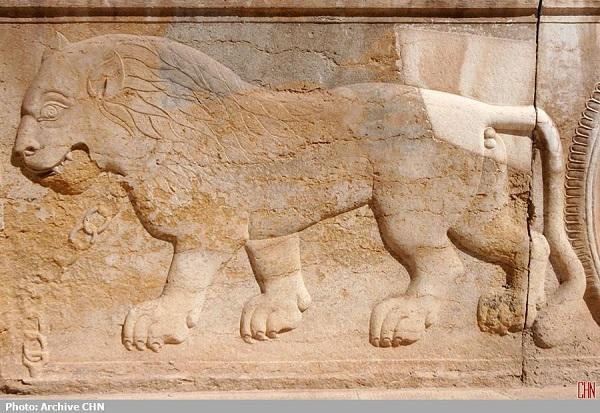 موزه نارنجستان قوام13