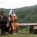 عکسهای زیبا از زیباترین جاده جنگلی ایران