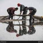 صید ماهی در سواحل مازندران