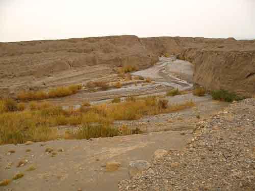 رود چاورچی