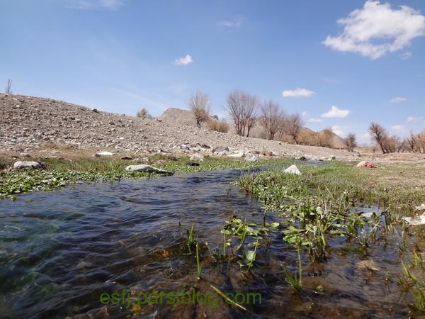 رود چاورچی1