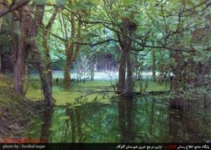 مناظر زیبا از استل وَلمازو / گلوگاه مازندران