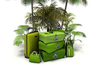 3D rendering of a pile of green luggage among exotic vegetation