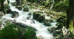 چشمه جنگل سرخ او خلیل شهر .مازندران(www.gardeshgariiran.ir)