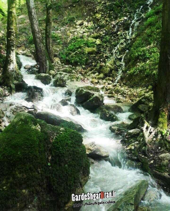 چشمه جنگل سرخ او (فرستاده شده از: یدالله رعیت پناه)